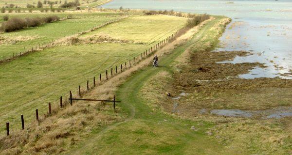 Le renouvellement littoral, de gré ou de force